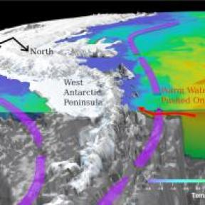 Antarctic wave flow web
