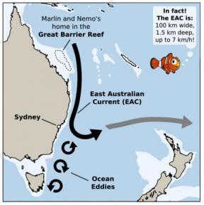 East Australian current - more ribbon than tube