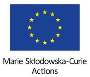 Marie_Curie_Fellowship_3