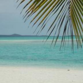 Tropical beach - stock xchng