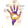 ARCCSS - the handprint of climate change reduced